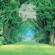 The Enchanted Garden - Kevin Kern