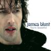 James Blunt - You're Beautiful Grafik