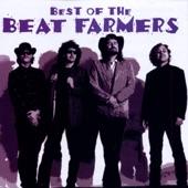 Beat Farmers - God Is Here Tonight