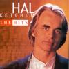 Hal Ketchum - Hal Ketchum: The Hits  artwork