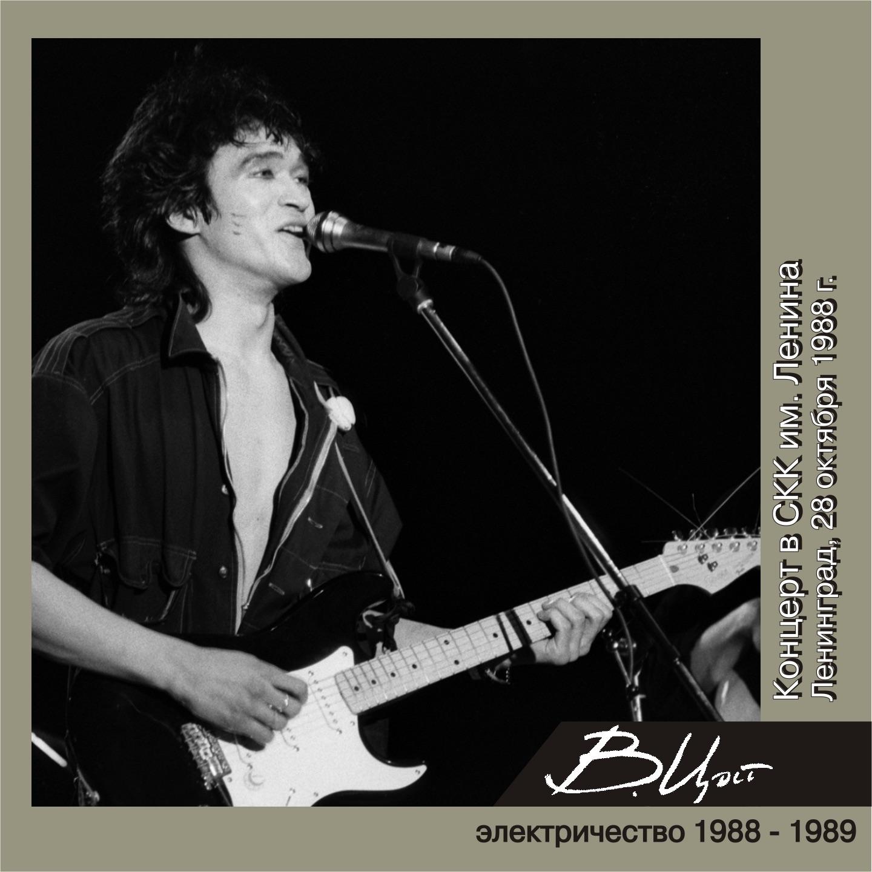 Концерт в СКК имени Ленина (Ленинград, 28 октября 1988 г.) [Live]