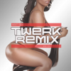 Best of Twerk Remix 2015 (Booty Shake Music) - Various Artists