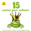 Hans Christian Andersen, Jean de La Fontaine, Frères Grimm & Charles Perrault - 15 contes pour enfants artwork