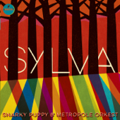 Sylva-Snarky Puppy & Metropole Orkest