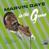In the Groove, Marvin Gaye