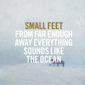 Small Feet - Gold