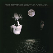 The Sisters of Mercy - Lucretia My Reflection (Vinyl Version)