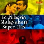 Chandanam Manakkunna (Album Ezhamathe Varavu) thumbnail