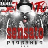 Sensato - Tu No Lo Sabe feat MelyMel  Padrino Song Lyrics