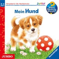 Mein Hund: Wieso? Weshalb? Warum? junior