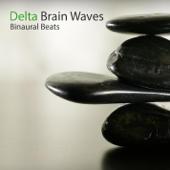 Delta Brain Waves