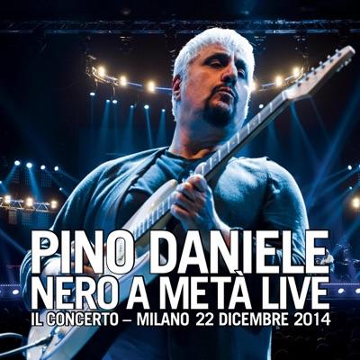 Nero a metà live - Il Concerto - Milano, 22 dicembre 2014 - Pino Daniele