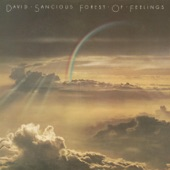 David Sancious - Further in the Forest of Feelings