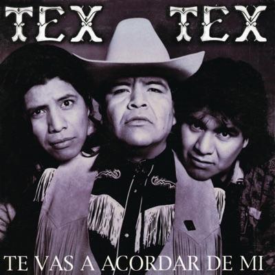 Te Vas a Acordar de Mi - Tex tex