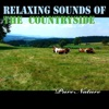Relaxing Sounds of the Countryside