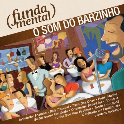 Fundamental - O Som do Barzinho - Renato Vargas