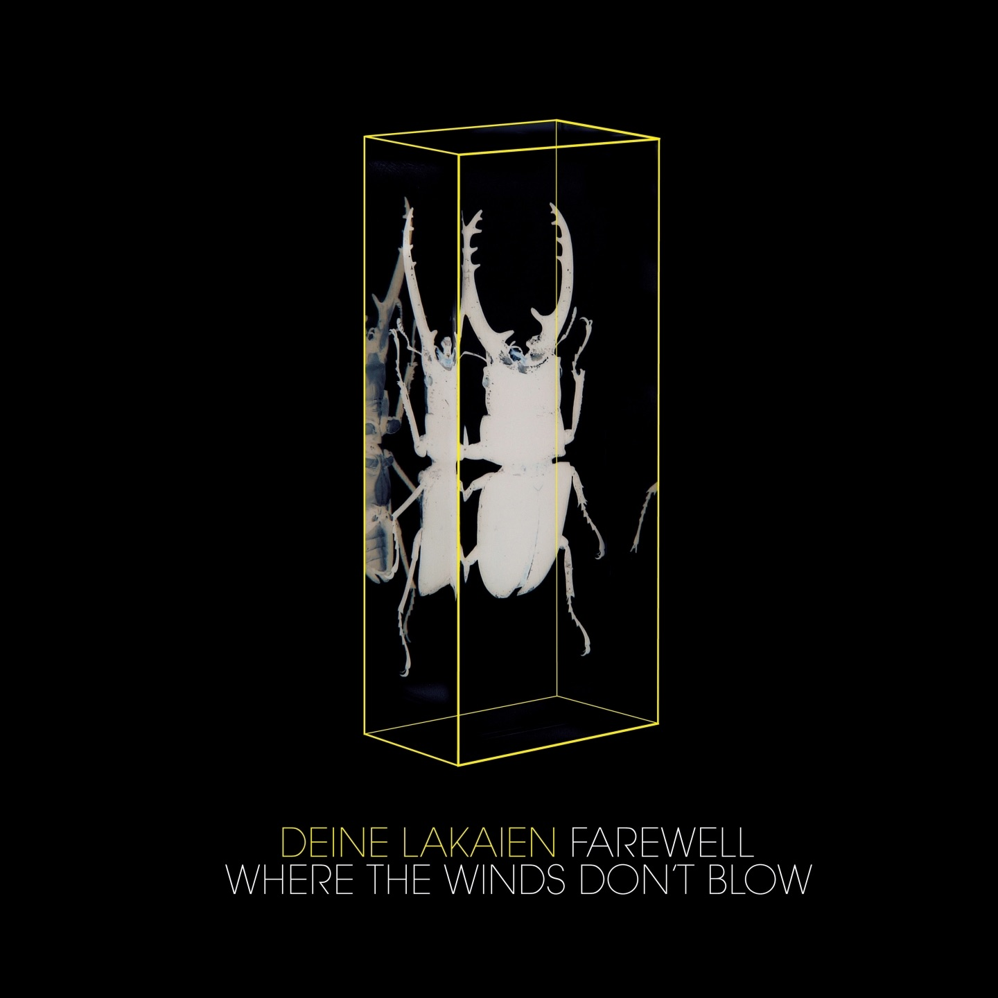 Farewell/Where the Winds Don't Blow - EP