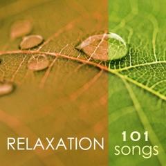 Relaxation 101 - Tibetan Chakra Meditation Music 4 Massage, Reiki & Deep Sleep Songs, Relaxing Nature Sounds