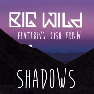 Shadows (feat. Josh Rubin) - Single Mp3 Download