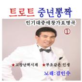 트로트 중년 뽕짝 인기대중애창가요 명곡, Vol. 1 (Cover Album)-김인수