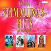 Top 101 Stimmungshits der Volksmusik, Vol. 3