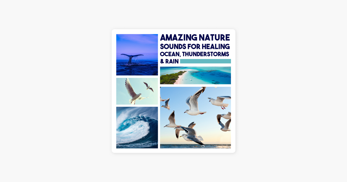 Amazing Nature Sounds for Healing: Ocean, Thunderstorms & Rain – Soothing  Nature Ambience, Relaxation, Meditation, Sleep, Studying, Peaceful