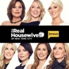 The Real Housewives of New York City, Season 9 wiki, synopsis