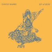 David Barbe - Portugese Door