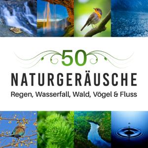 Entspannen Musik Akademie - 50 Naturgeräusche - Regen, Wasserfall, Wald, Vögel & Fluss für Yoga Meditation Musik, Muskelentspannung mit Entspannungstechniken