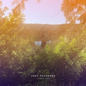Joey Pecoraro - Finding Parking