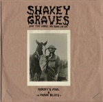 Shakey Graves - A Dream Is a Wish Your Heart Makes