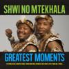 Shwi no Mtekhala - Ngafa artwork