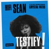 Testify (feat. Crystal Waters) [Radio Edit] - Single ジャケット写真
