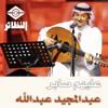 AbdulMajeed Abdullah - Alehom Saber artwork