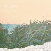 The Velveteins - Midnight Surf