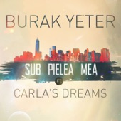 Sub Pielea Mea (feat. Carla's Dreams) - Single