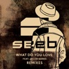 What Do You Love (Remixes) [feat. Jacob Banks], Seeb