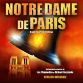 Notre Dame de Paris 2017 (Live au Palais des Congrès)