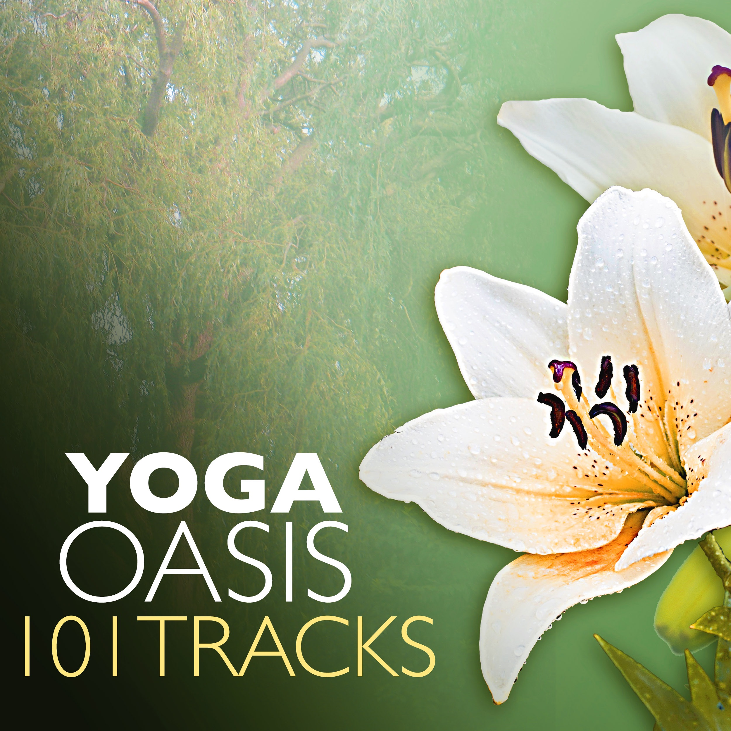 MP3 Songs Online:♫ Empathy - Yoga Music Maestro album Yoga Oasis 101 - Tracks for Yoga Classes, Rajyoga Meditation and Mindfulness Practice. Instrumental,Music,New Age listen to music online free without downloading.