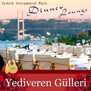 Ahmet Senyüz - Sen Gelmez Oldun