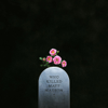 Who Killed Matt Maeson - EP - Matt Maeson