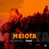 Meiota Dennis Remix feat Dennis DJ Single