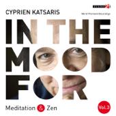 In the Mood for Meditation & Zen, Vol. 3: Albinoni, Mozart, Schubert, Gounod, Grieg, Boulez... (Classical Piano Hits)