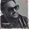 Yaad Teri - Single