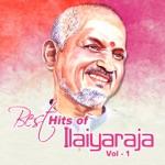 Vaigai Nathioram (Album Rickshaw Mama) thumbnail