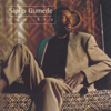 Sipho Gumede - Peacocks Today - Feather Dusters Tomorrow artwork