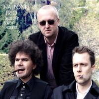 Najponk Trio - Bluesin' Black Forest artwork