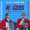 Festa Junina Instrumental - Elias Carneiro mp3