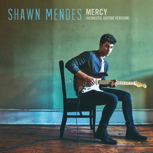 Shawn Mendes - Mercy (Acoustic Guitar) - Single