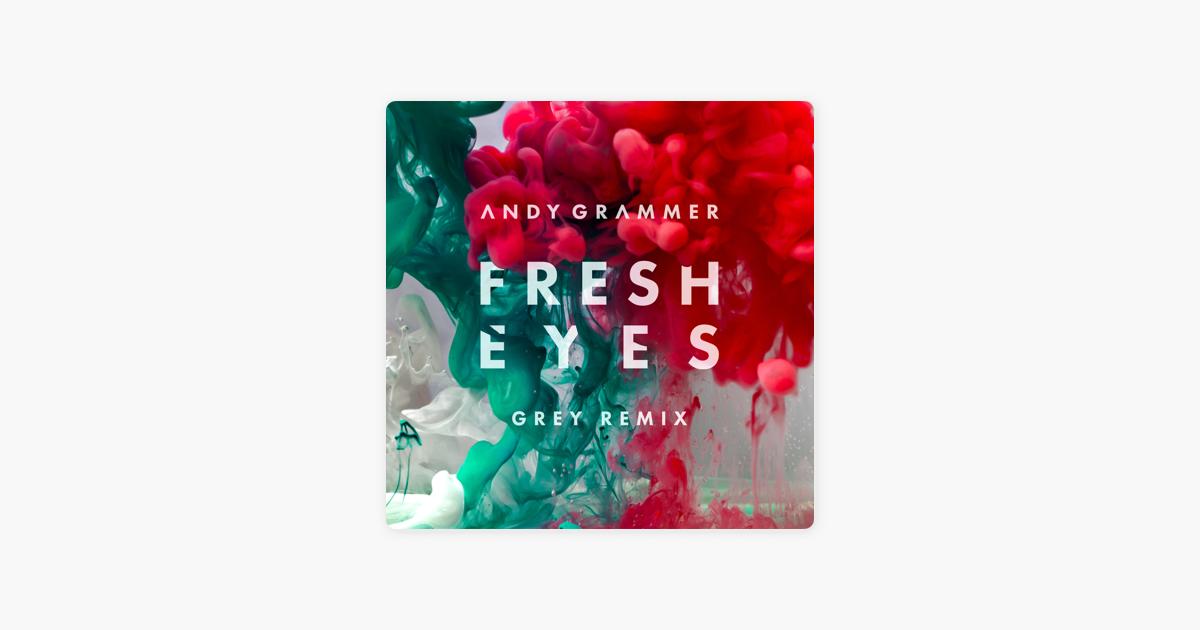 Fresh Eyes (Grey Remix) - Single by Andy Grammer